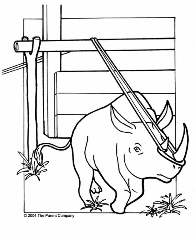 The Aardvark In The Ark